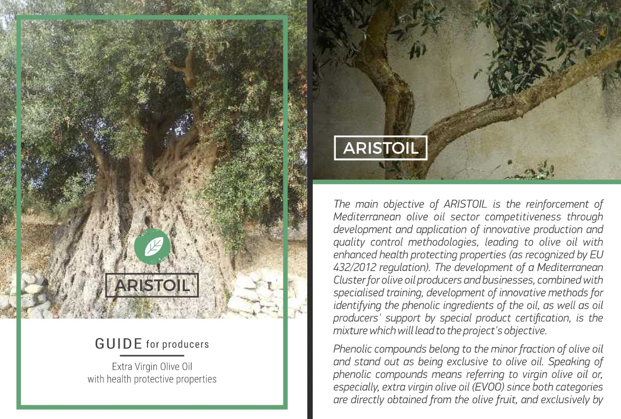 Important tools and guidelines for producers and olive oil sector key players